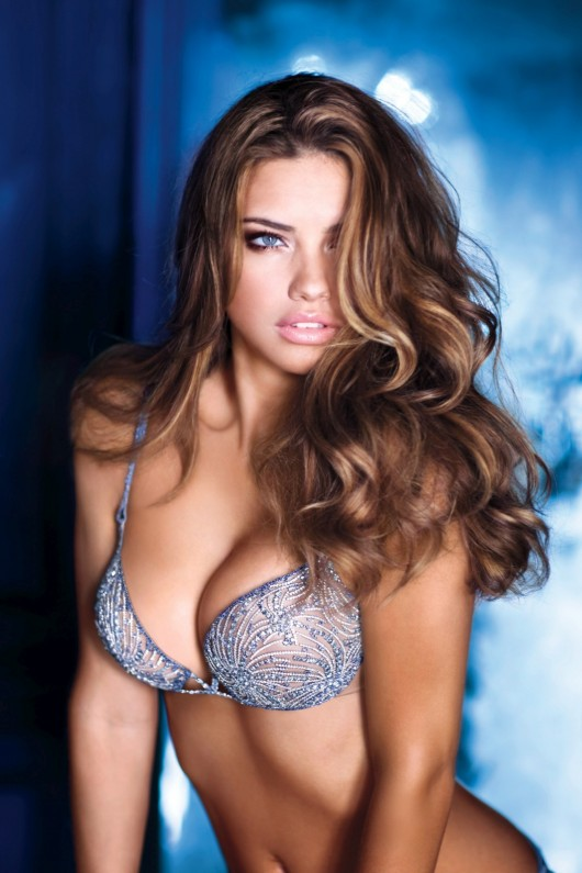 to post Adriana Lima – 2010 VS Holiday Photoshoot (Inc 2mil Bra
