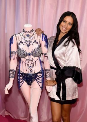 Adriana Lima - 2014 Victoria's Secret Show Backstage in London