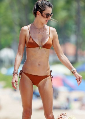 Alessandra Ambrosio Hot in Bikini -10