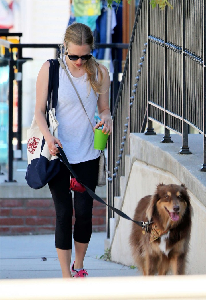 Amanda Seyfried walking her dog Finn in Williamstown