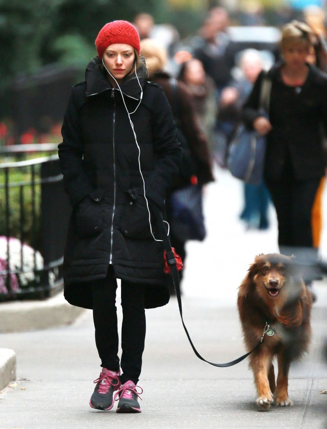 Amanda Seyfried - Walking her dog in NYC
