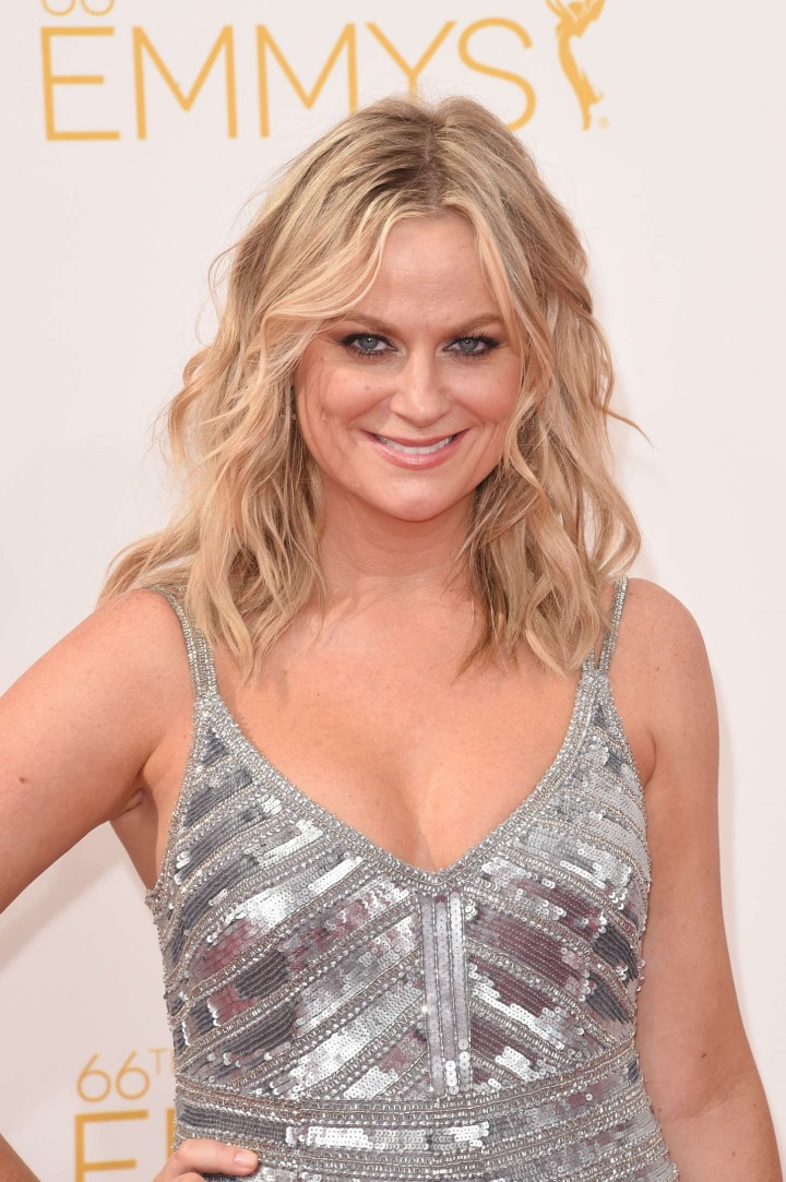 Amy Poehler - 66th annual Primetime Emmy Awards in LA
