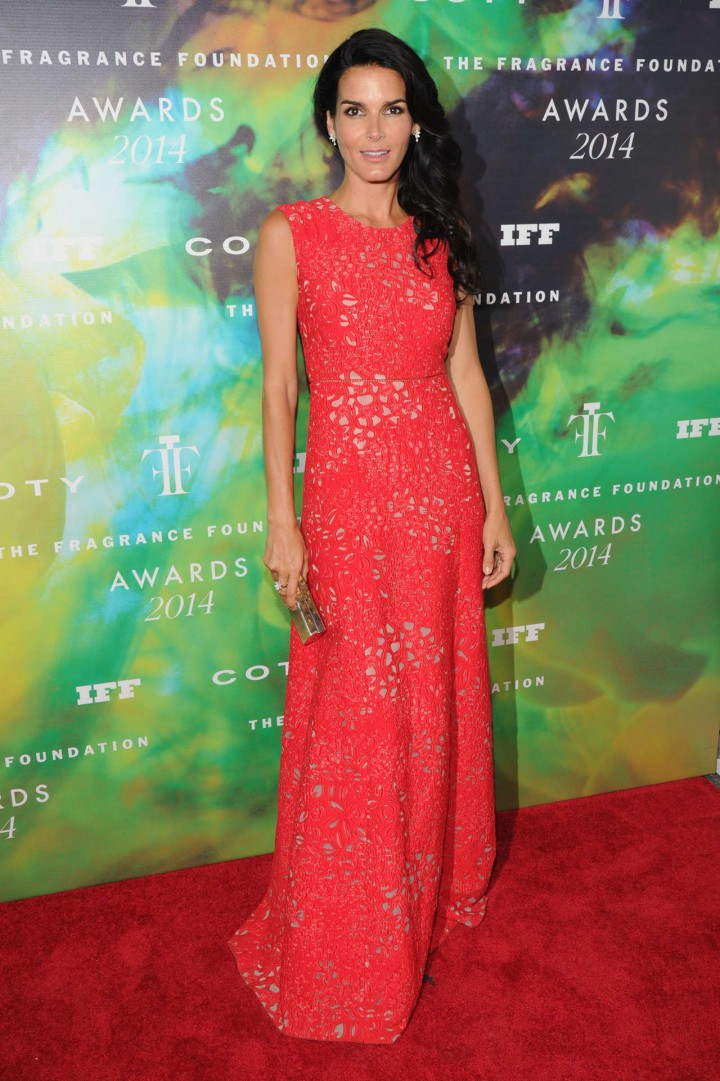Angie Harmon - 2014 Fragrance Foundation Awards in NYC -02