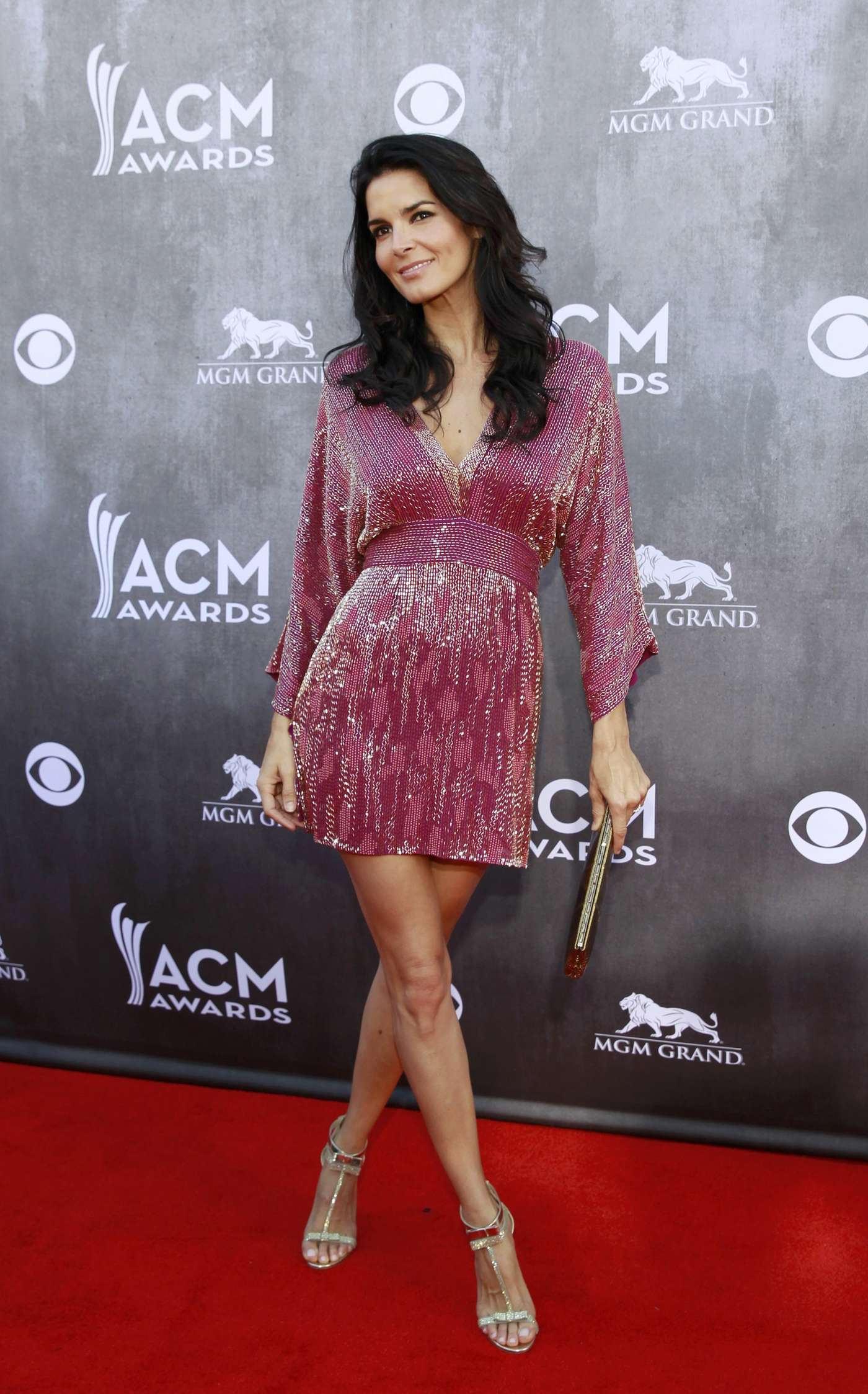 Angie Harmon 2014 Academy Of Country Music Awards 02 Gotceleb