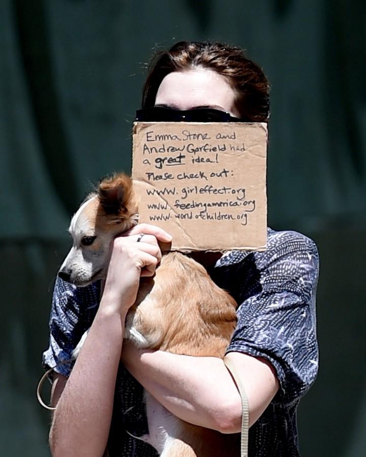 Anne Hathaway walking her two dogs in Brooklyn