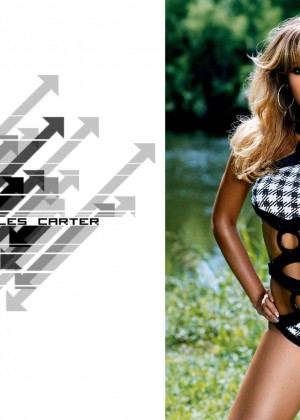 Beyonce 30 Hot Wallpapers -15