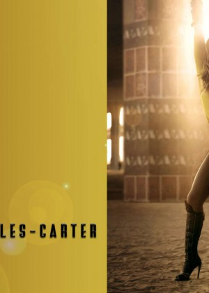 Beyonce 30 Hot Wallpapers -20