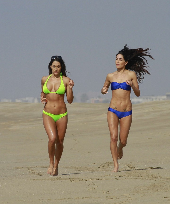 78c69c641a Bella Twins Bikini Photos  2014 LA Beach -05 – GotCeleb