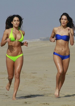 Bella Twins Bikini Photos: 2014 LA Beach -31