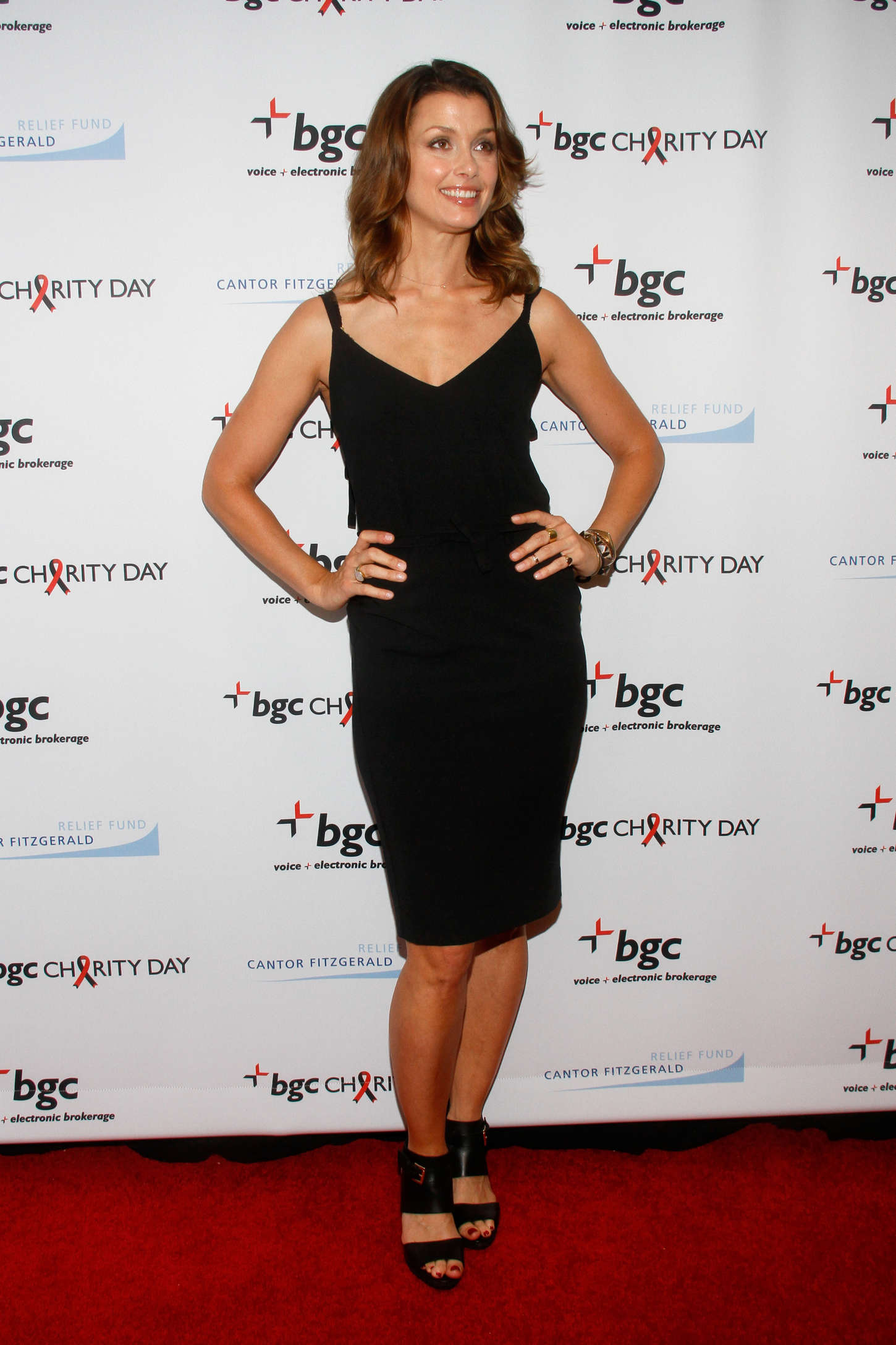 Bridget Moynahan charity