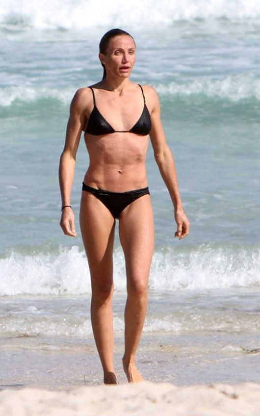 Cameron diaz bathing suit apologise