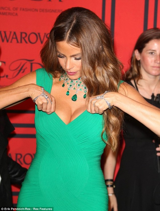 CFDA Fashion Awards 2013: Sofia Vergara -01