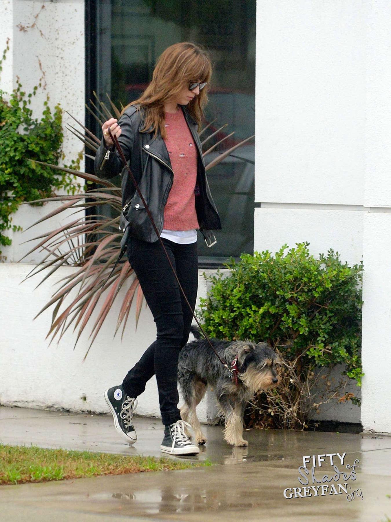 Dakota johnson in black jeans walks her dog in los angeles for Dog boarding los angeles