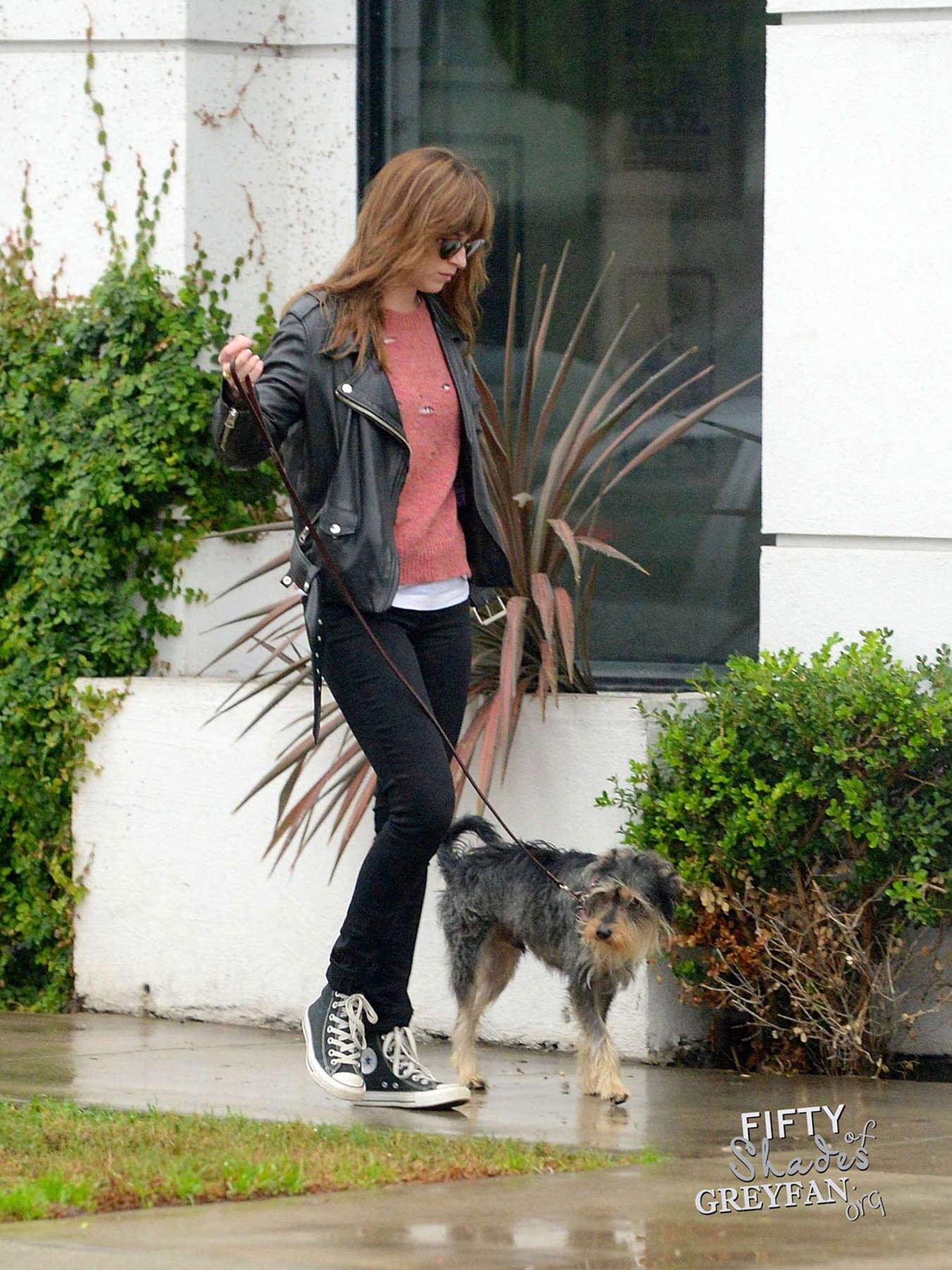 Dakota johnson in black jeans 11 gotceleb for Dog boarding los angeles