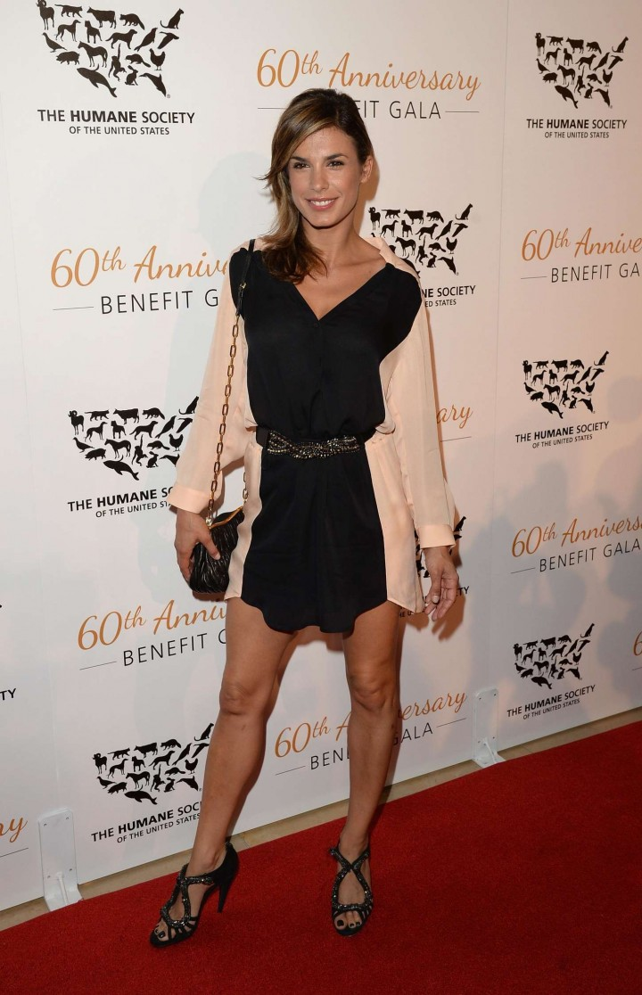 Elisabetta Canalis – 60th Anniversary Humane Society of The United States Gala in Beverly Hills