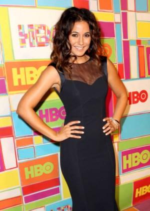 Emmanuelle Chriqui - 2014 HBO's Official Emmy After Party in LA