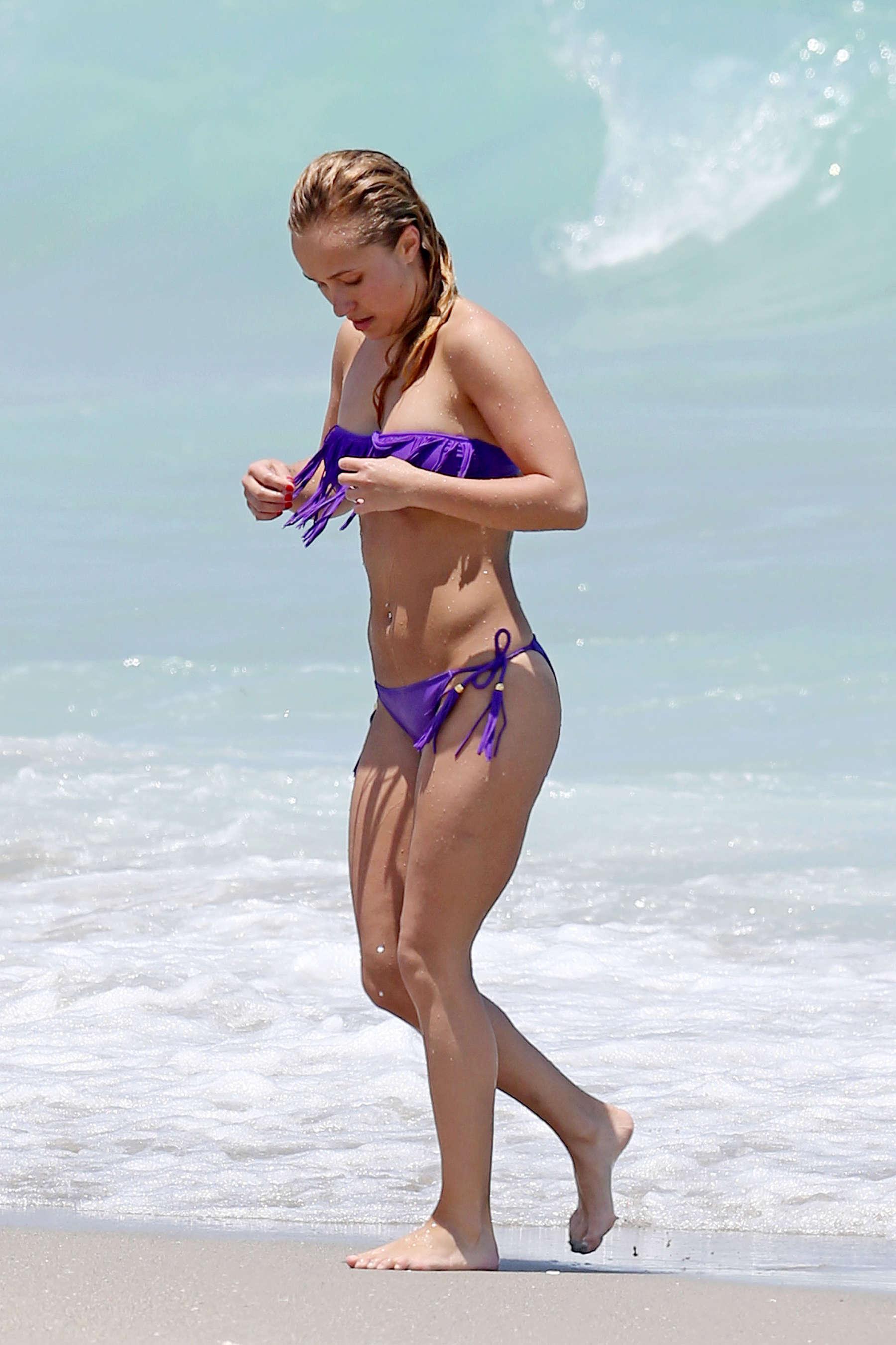 Hayden penettiere bikini