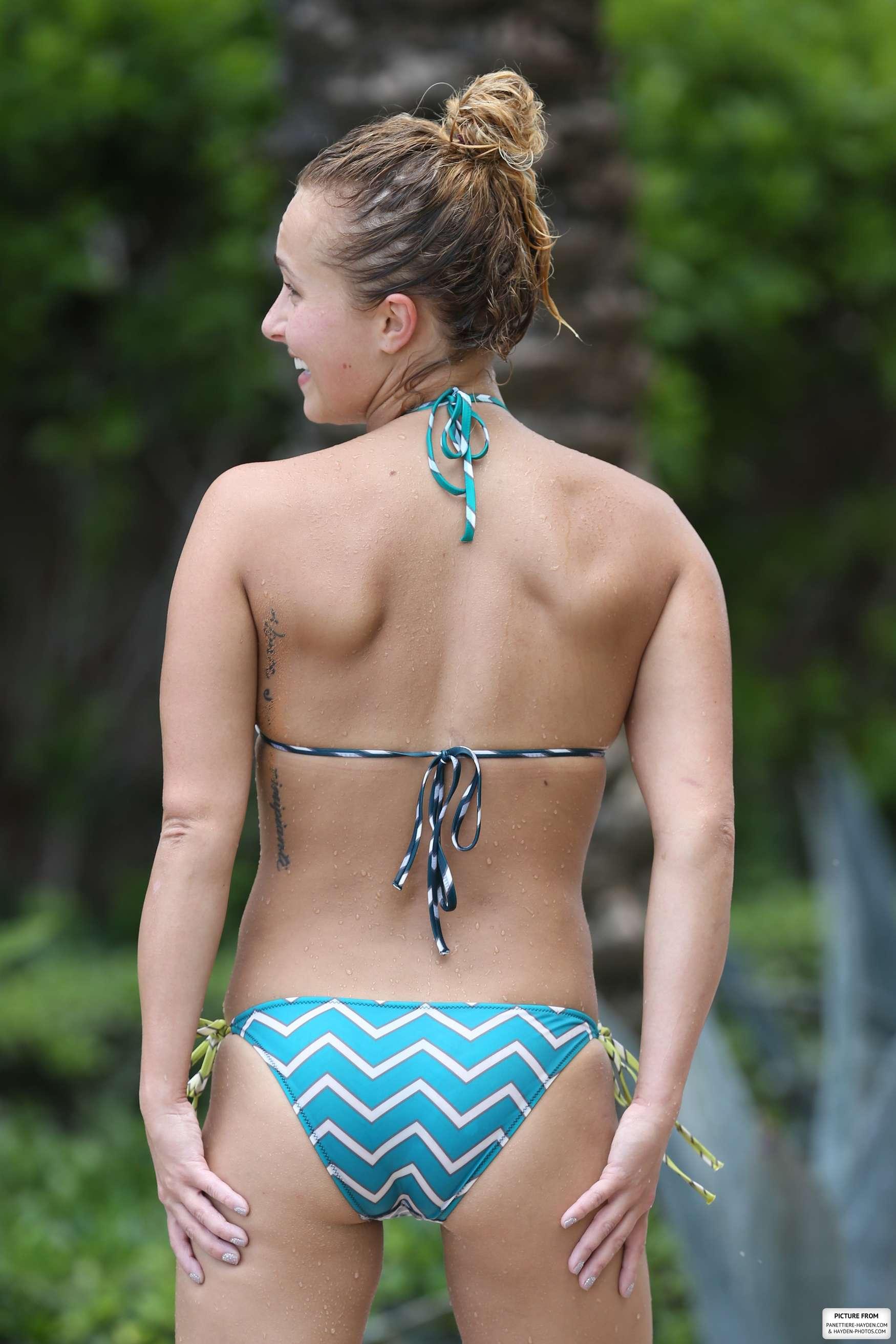 Bikini hayden panettiere pic