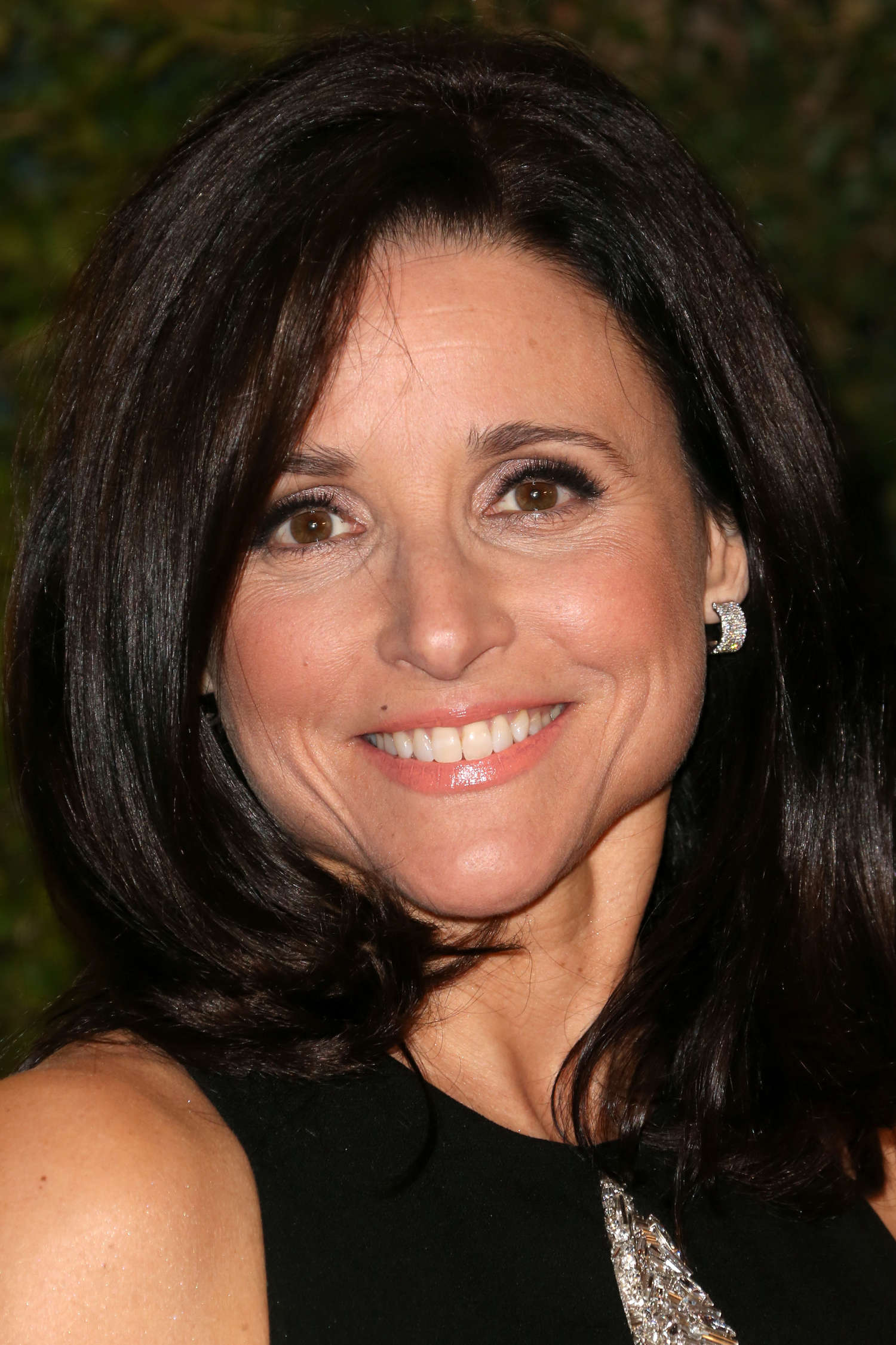 Julia Louis Dreyfus 2013 Ampas Governors Awards 01