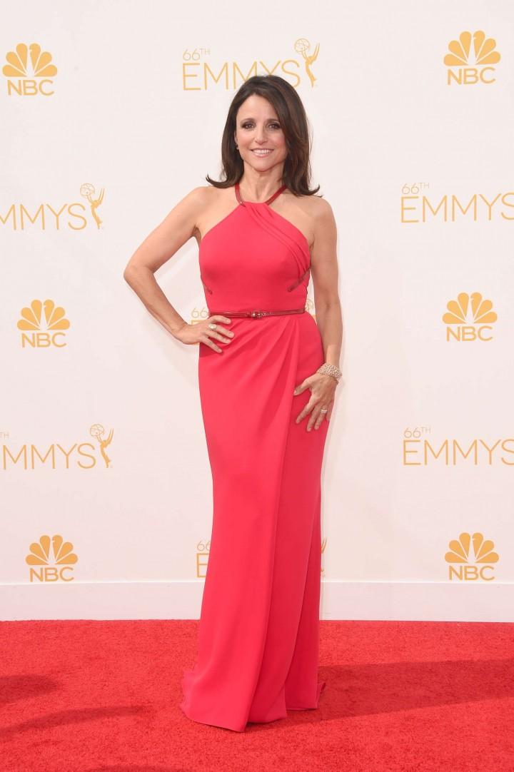 Julia Louis Dreyfus - 66th annual Primetime Emmy Awards in LA