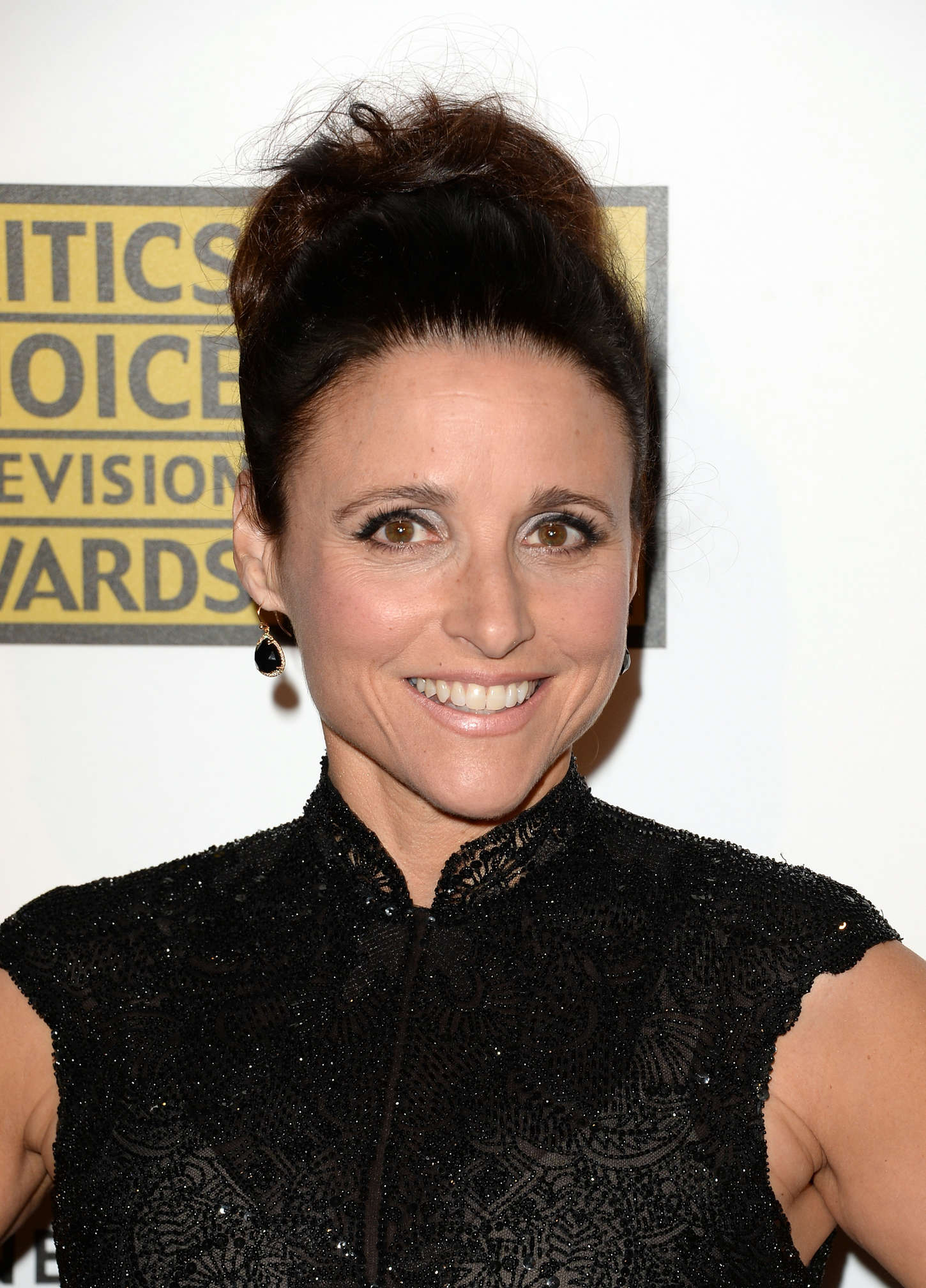Julia Louis Dreyfus 2013 Julia Louis Dreyfus at The