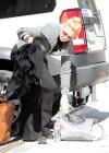 Katherine Heigl in Tight Pants Out in Los Feliz -13
