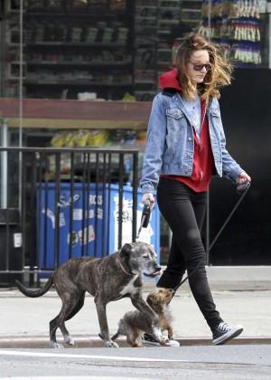 Walks Leighton Moss Dogs