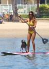 Leilani Dowding in bikini paddleboarding-31
