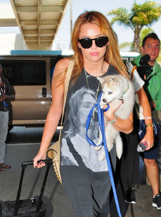 Miley Cyrus Arrives at LAX Airport With Her Dog
