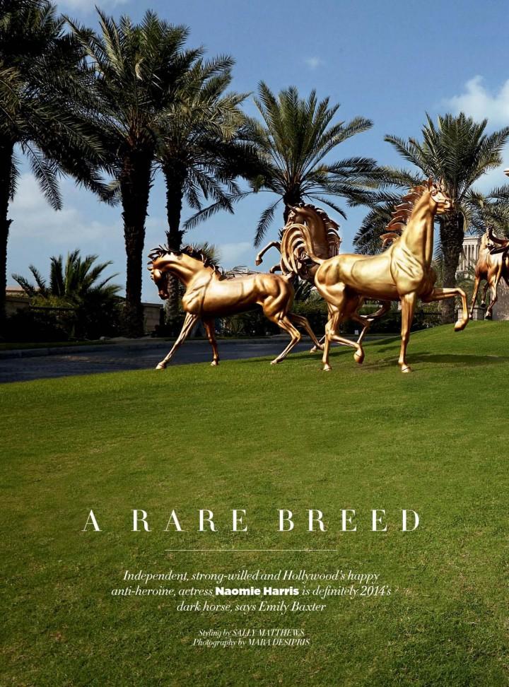 Naomie Harris: Harpers Bazaar Arabia -03