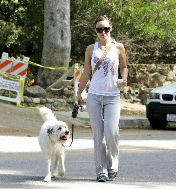 Olivia wilde candids in the hollywood hills june 24 01 for Celebrities that live in hollywood hills