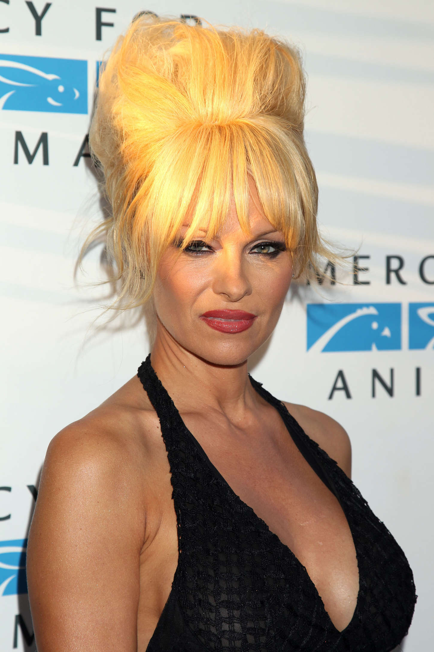 Pamela Anderson 2014 Mercy For Animals Gala 18 Gotceleb