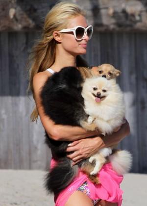 Paris Hilton in a Bikini in Malibu -06
