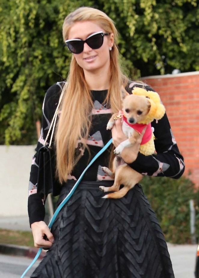 Paris Hilton with her dogs out in LA