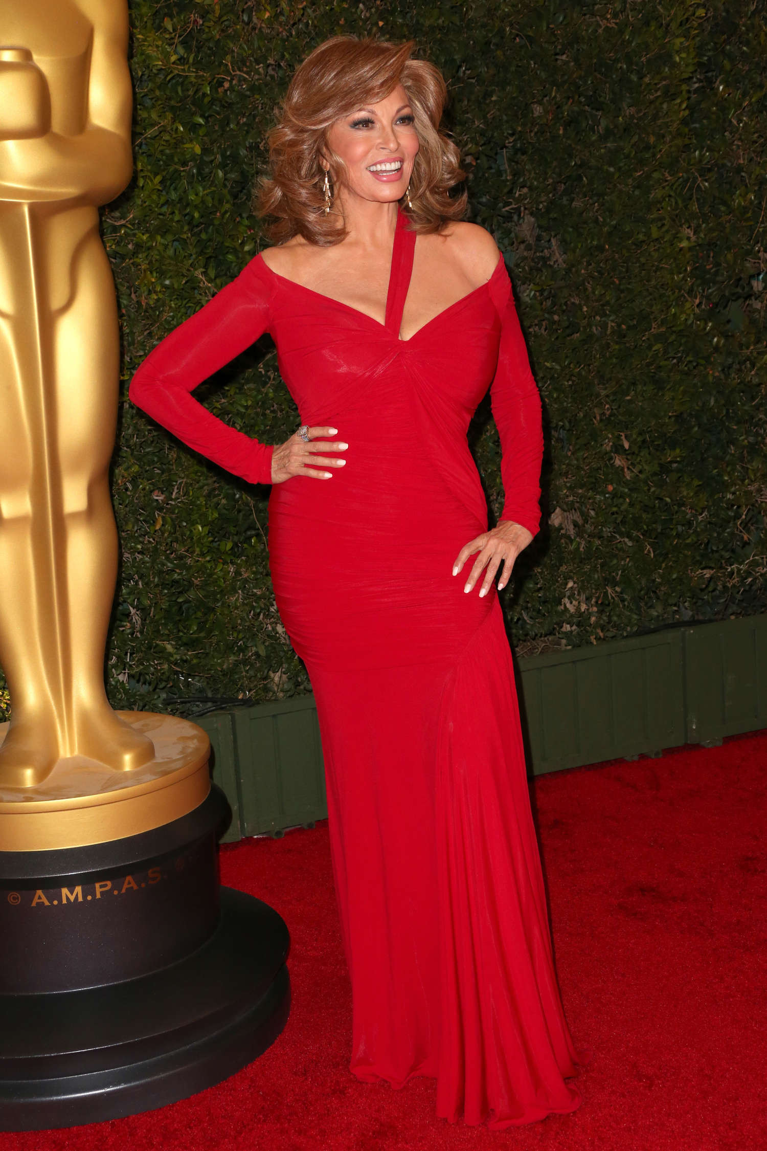 Back to post Raquel Welch – 2013 AMPAS Governors Awards in Hollywood
