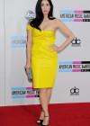 Sarah Silverman: 2013 American Music Awards -13