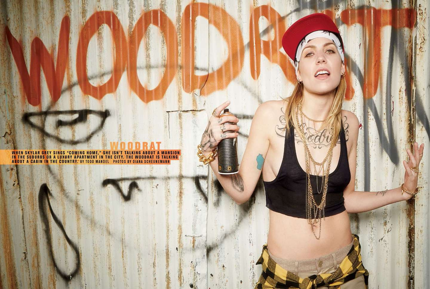 skylar grey – straight shooter