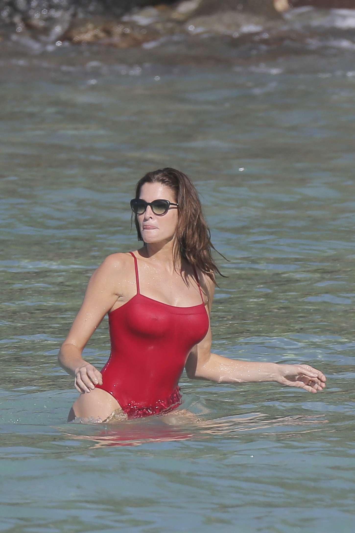 Stephanie Seymour Red Swimsuit 2014 13 Gotceleb