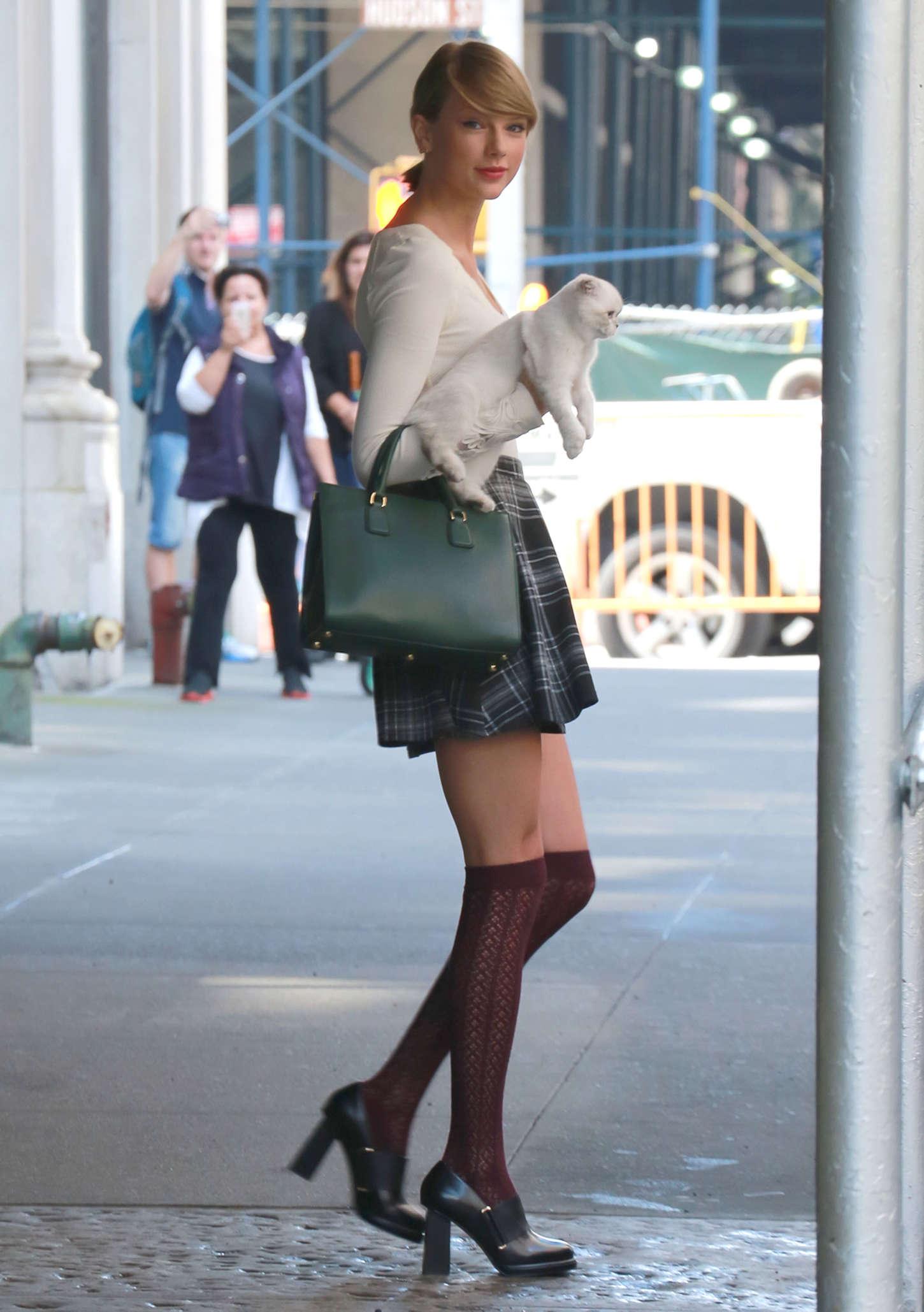 Тейлор свифт под юбкой