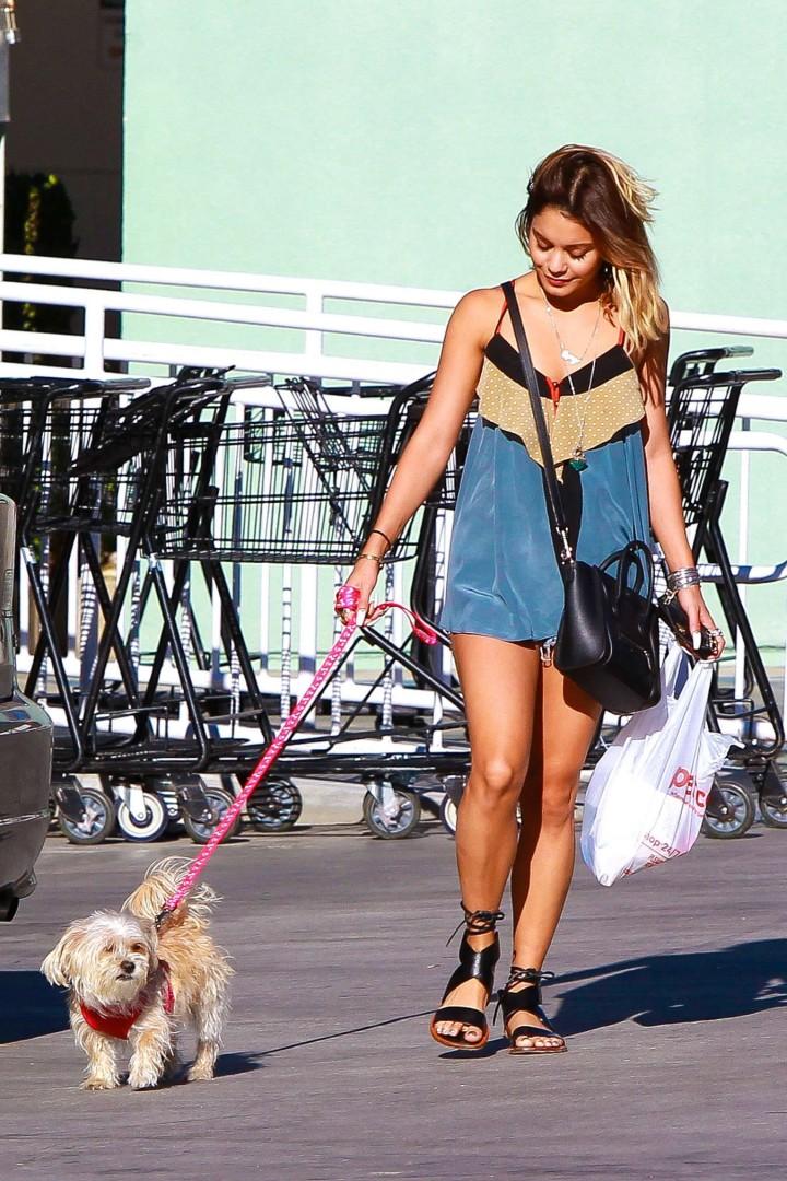 Vanessa Hudgens – Walking Her Dogs