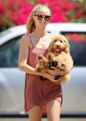 Abby Champion walks her dog in LA