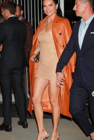 Adriana Lima - Outside the Vanity Fair party of the Academy Award Museum grand opening