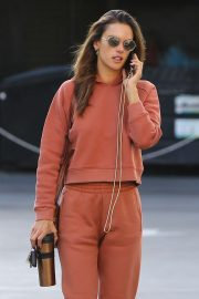 Alessandra Ambrosio - Out running errands in Brentwood