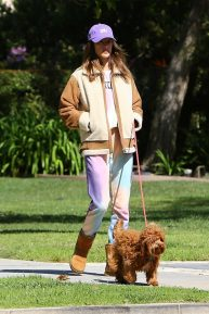 Alessandra Ambrosio - Out with her dogs in Santa Monica