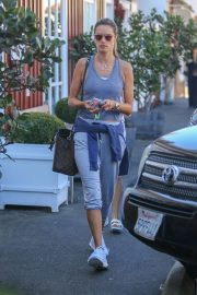 Alessandra Ambrosio - Seen at the Country mart in Brentwood