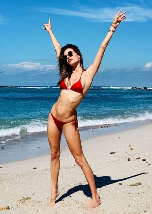 Alessandra Ambrosio - Social Media Pics