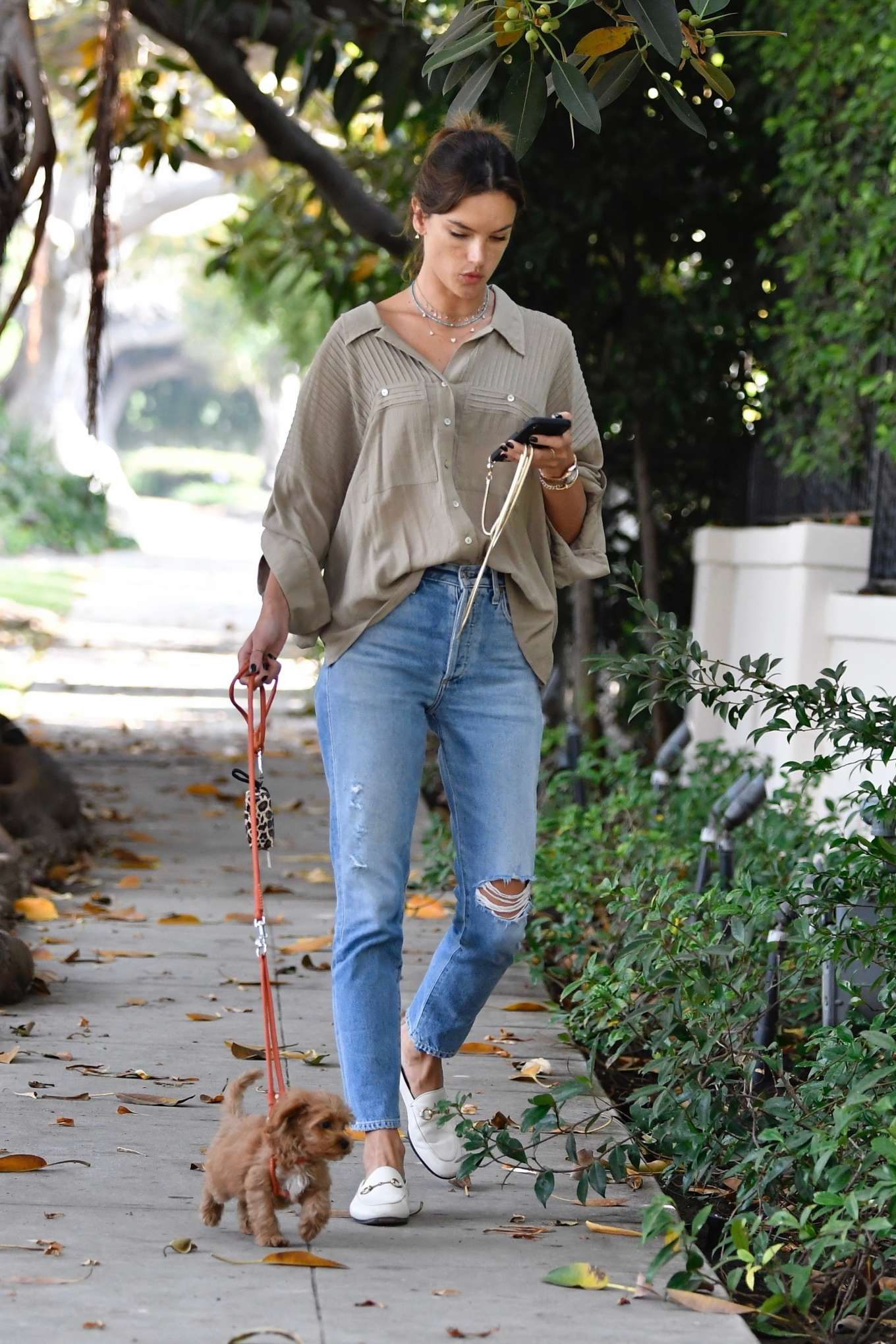 Alessandra Ambrosio - Takes her dog for a morning walk in Brentwood