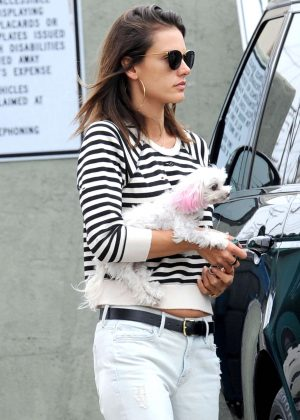 Alessandra Ambrosio takes her dog to the vet in Santa Monica