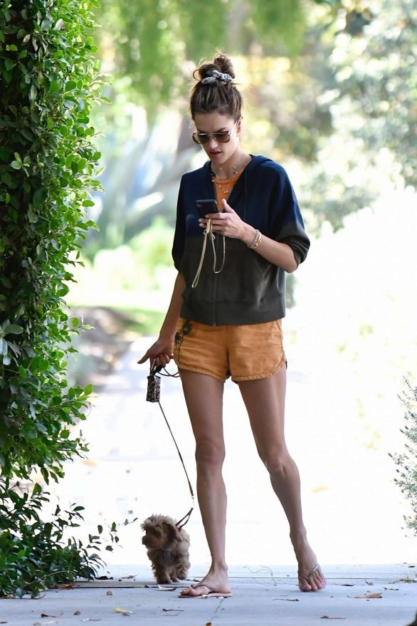 Alessandra Ambrosio - Taking her pooch for a walk in Brentwood