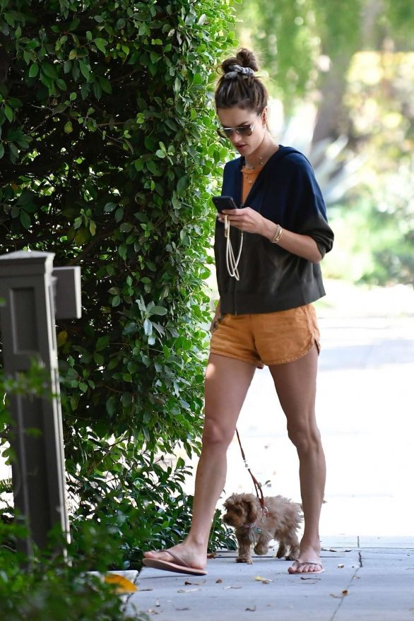 Alessandra Ambrosio 2019 : Alessandra Ambrosio – Taking her pooch for a walk in Brentwood-11